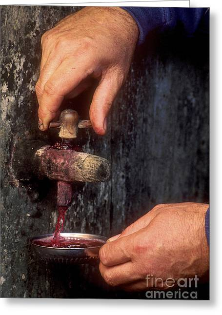 Cellar Greeting Cards - Hands pulling red wine barrel Greeting Card by Bernard Jaubert