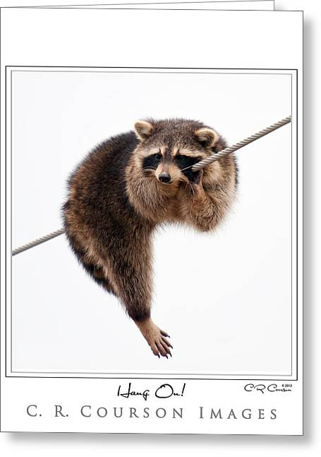 Courson Greeting Cards - Hang On Greeting Card by CR  Courson