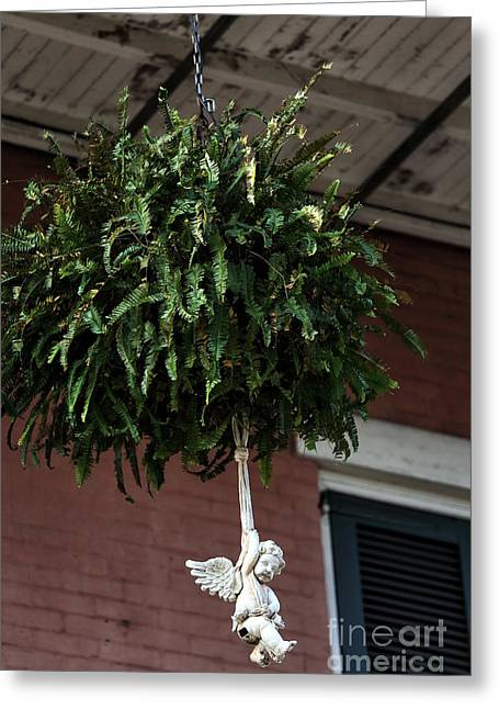 Hanging Planter Greeting Cards - Hangin in Nawlins Greeting Card by John Rizzuto