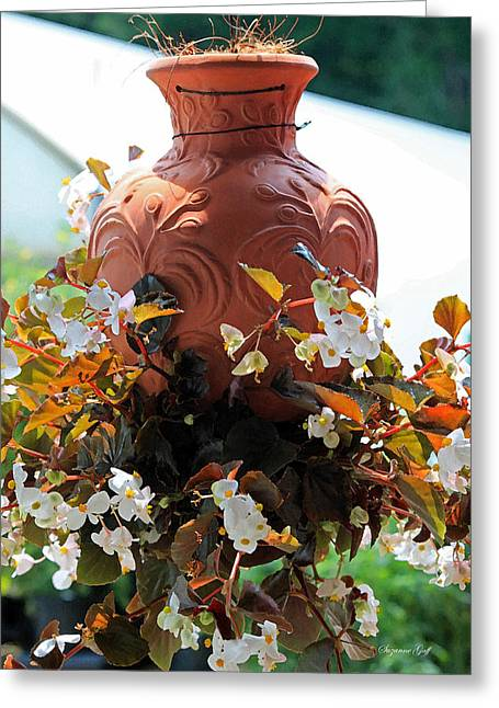 White Clay Greeting Cards - Hanging Begonia Pot in Watercolor Greeting Card by Suzanne Gaff