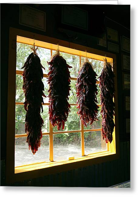 Hanging Dried Red Chilies Backlit Greeting Card by Julien Mcroberts
