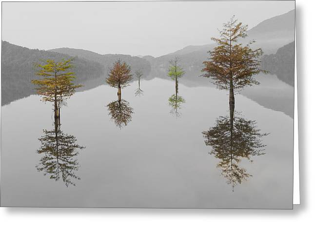 Foggy Landscapes Greeting Cards - Hanging Garden Greeting Card by Debra and Dave Vanderlaan