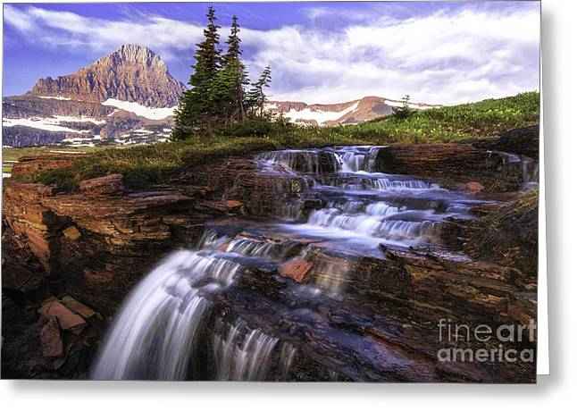 Falling Water Creek Greeting Cards - Hanging Gardens Cascades - Logan Pass Greeting Card by Thomas Schoeller