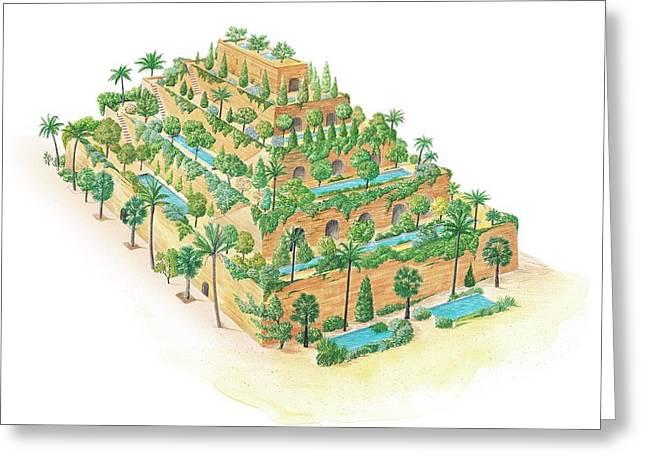Hanging Gardens Of Babylon Greeting Card by Gary Hincks