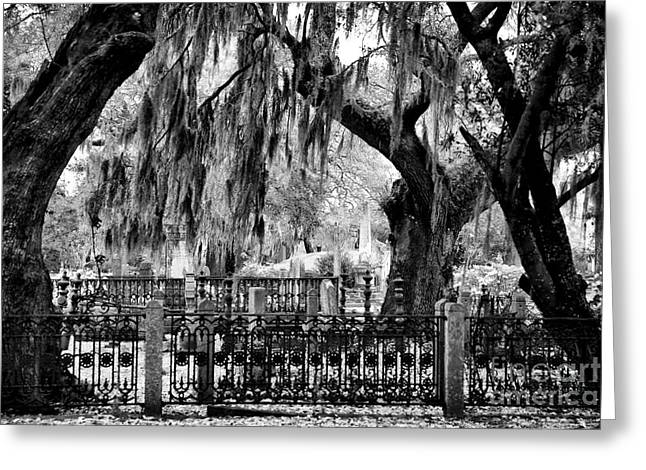 Historic Cemetery Greeting Cards - Hanging Moss at Magnolia Greeting Card by John Rizzuto