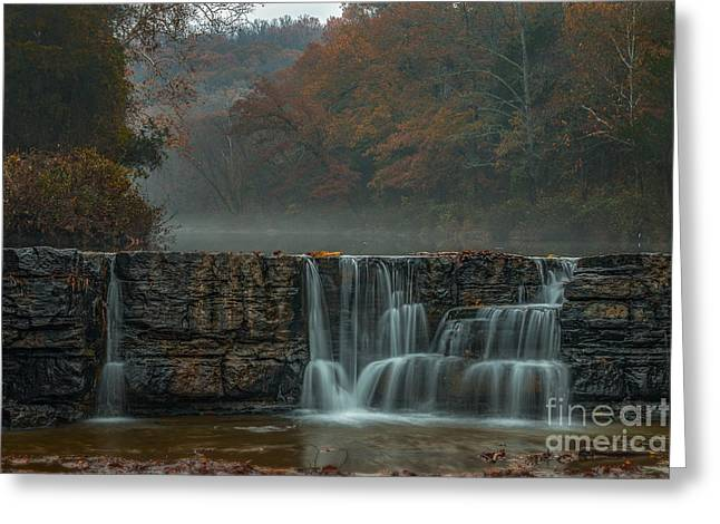Natural Dam Arkansas Greeting Cards - Hanging onto Fall Greeting Card by Larry McMahon