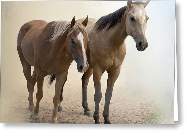 Quarter Horses Greeting Cards - Hanging Out Together Greeting Card by Betty LaRue