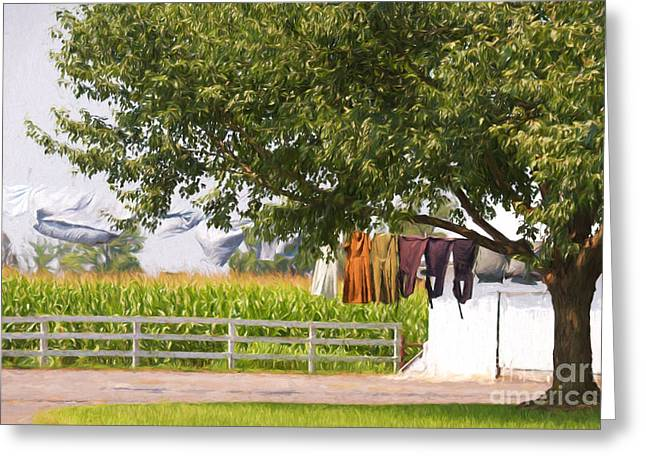 Hanging The Wash Greeting Card by Terry Weaver