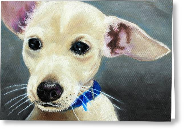 Sitting Pastels Greeting Cards - Hank Greeting Card by Jeanne Fischer