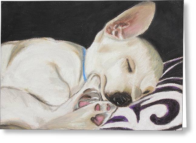 Expression Pastels Greeting Cards - Hanks Sleeping Greeting Card by Jeanne Fischer