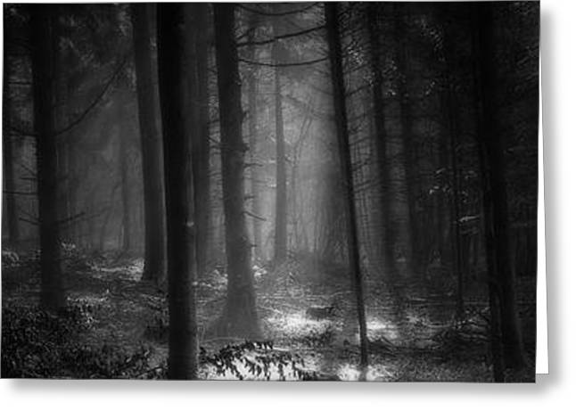 Light And Dark Greeting Cards - Hansel and Gretel Greeting Card by John Chivers