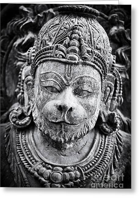 Sacred Greeting Cards - Hanuman Monochrome Greeting Card by Tim Gainey