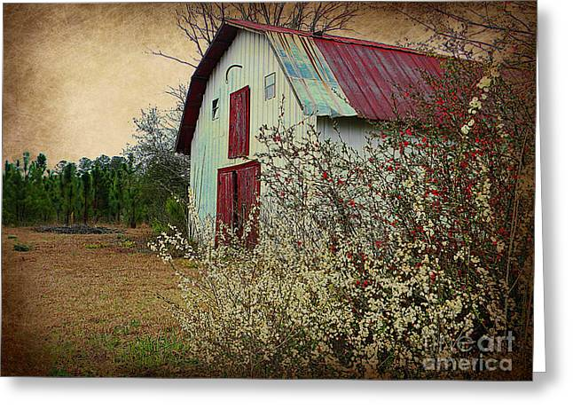 Red Roofed Barn Greeting Cards - Happy Barn in Spring Greeting Card by Lorraine Heath