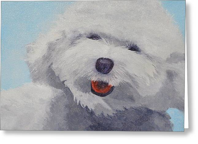 Bischon Greeting Cards - Happy Bischon Greeting Card by Kathy Soliday