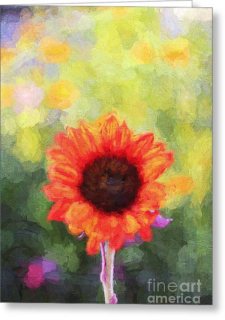 Yellow Sunflower Greeting Cards - Happy ColorsII Greeting Card by Darren Fisher