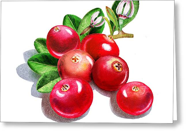 Sour Greeting Cards - Happy Cranberry Bunch Greeting Card by Irina Sztukowski