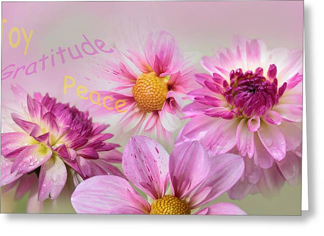 Raindrops On Flowers Greeting Cards - Happy Dahlias Greeting Card by Angie Vogel