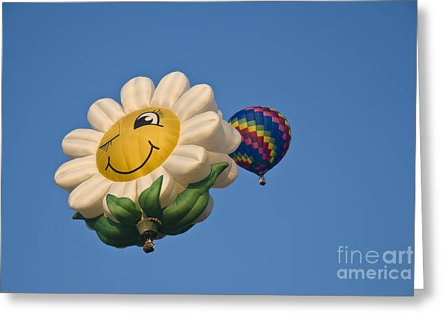 Happy Daisy Greeting Card by Charles Dobbs