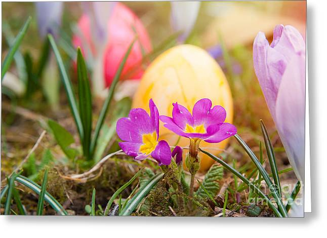 Easter Flowers Greeting Cards - Happy Easter Greeting Card by Christine Sponchia