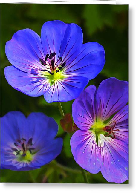 Floral Digital Art Greeting Cards - Happy Face Greeting Card by Bill Caldwell -        ABeautifulSky Photography