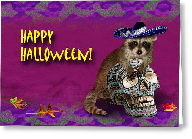 Party Invite Greeting Cards - Happy Halloween Raccoon Greeting Card by Jeanette K