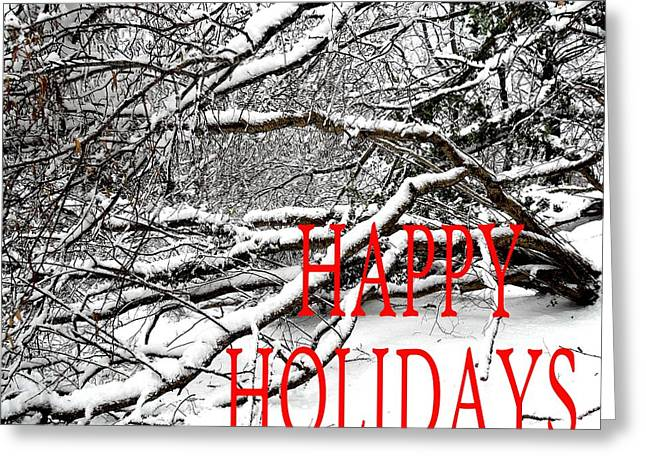 Christmas Posters Photographs Greeting Cards - Happy Holidays 36 Greeting Card by Patrick J Murphy