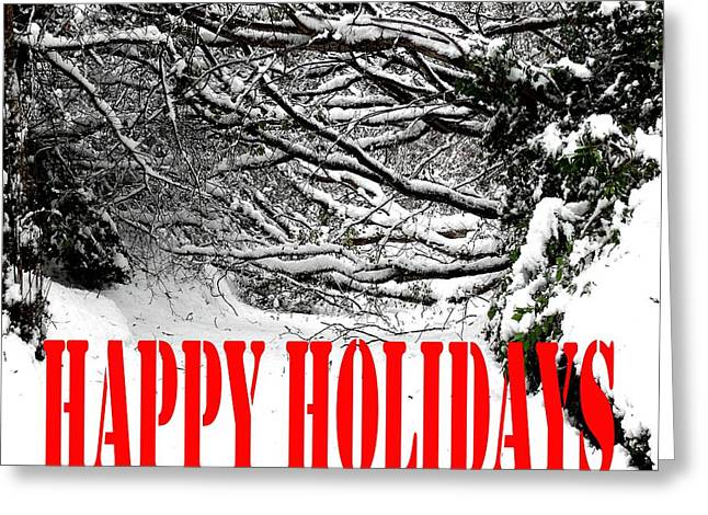 Christmas Posters Photographs Greeting Cards - Happy Holidays 39 Greeting Card by Patrick J Murphy