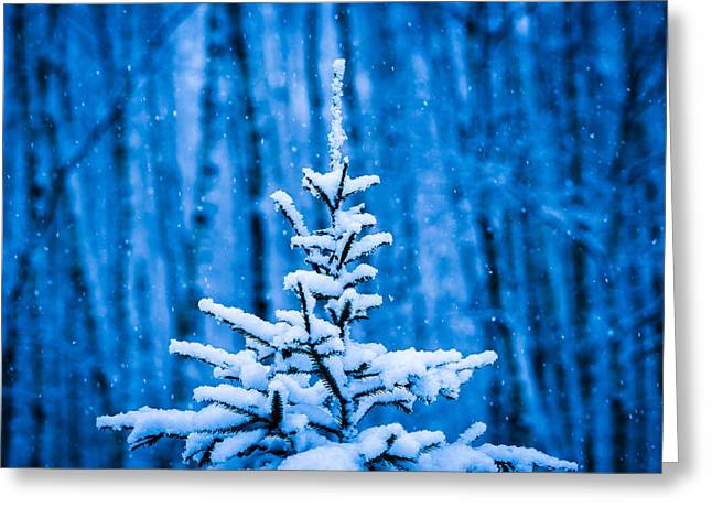 Snowstorm Posters Greeting Cards - Happy Holidays To All Greeting Card by Alexander Senin