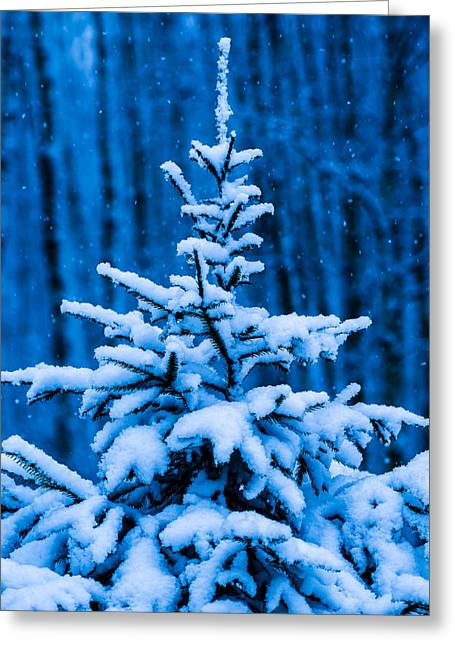 Snowstorm Posters Greeting Cards - Happy Holidays To You And Yours Greeting Card by Alexander Senin