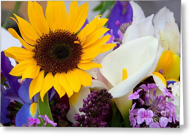 Yellow Greeting Cards - Happy Mix Greeting Card by Dana Kern