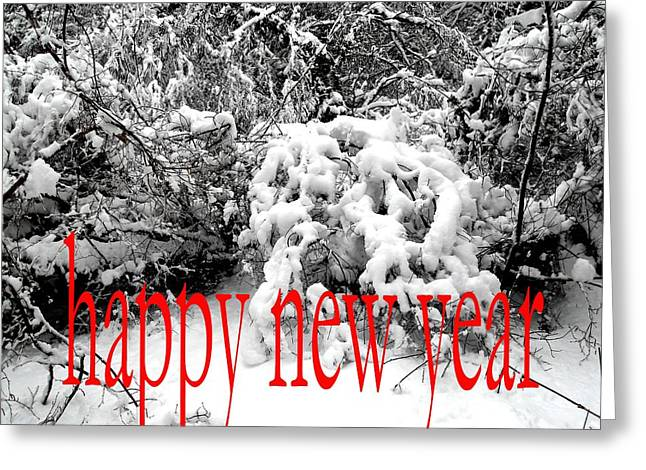 Christmas Posters Photographs Greeting Cards - Happy New Year 29 Greeting Card by Patrick J Murphy