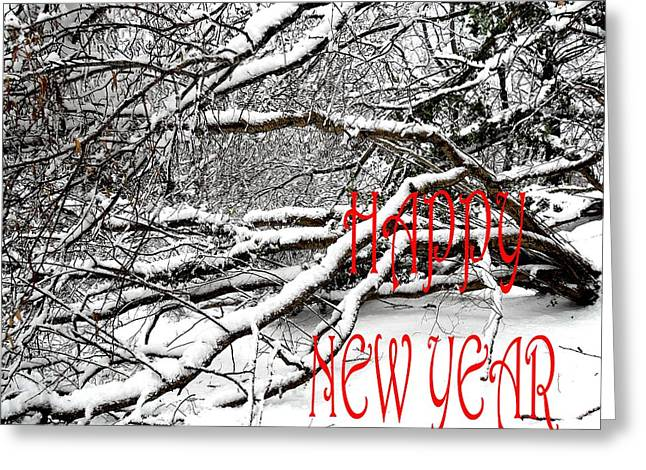 Christmas Posters Photographs Greeting Cards - Happy New Year 30 Greeting Card by Patrick J Murphy