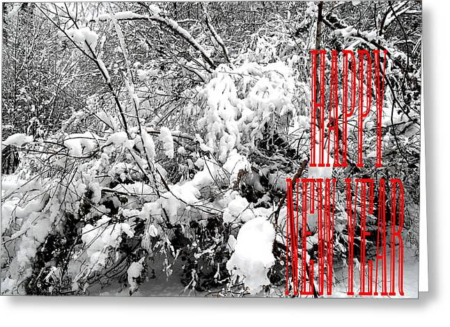 Christmas Posters Photographs Greeting Cards - Happy New Year 32 Greeting Card by Patrick J Murphy