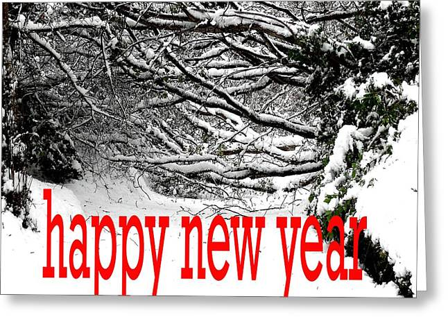 Christmas Posters Photographs Greeting Cards - Happy New Year 33 Greeting Card by Patrick J Murphy