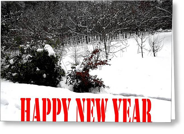 Christmas Posters Photographs Greeting Cards - Happy New Year 34 Greeting Card by Patrick J Murphy