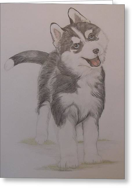 Puppies Drawings Greeting Cards - Happy Puppy Greeting Card by Shawn Gilmour