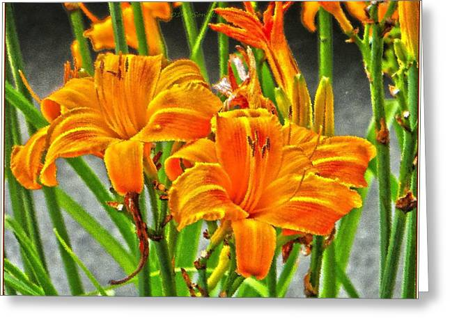 Acrylicprint Greeting Cards - Happy Spring Greeting Card by Sonali Gangane