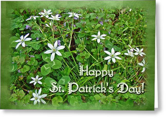 Star Of Bethlehem Greeting Cards - HAPPY ST PATRICKS DAY - Star of Bethlehem Wildflowers Greeting Card by Mother Nature