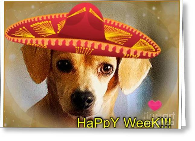Pound Puppies Greeting Cards - HapPY WeeK.. Greeting Card by Angela J Wright