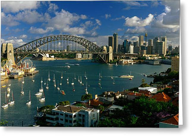 Blue Sailboats Greeting Cards - Harbor And City And Bridge, Sydney Greeting Card by Panoramic Images