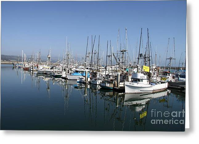Half Moon Bay Greeting Cards - Harbor At Half Moon Bay Greeting Card by Christiane Schulze Art And Photography