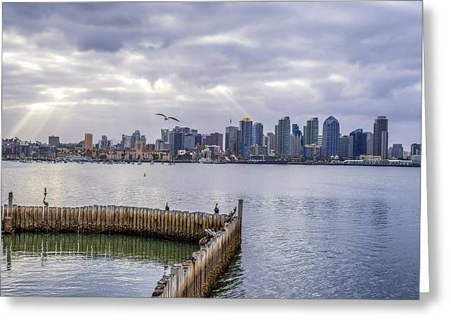 Images Of San Diego Greeting Cards - Harbor Morning Greeting Card by Joseph S Giacalone
