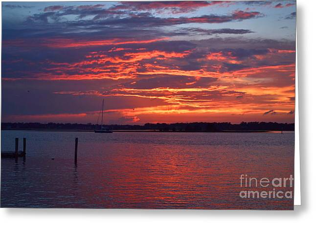 Yellow Sailboats Greeting Cards - Harbor Side Serene Sunset Greeting Card by Amy Lucid