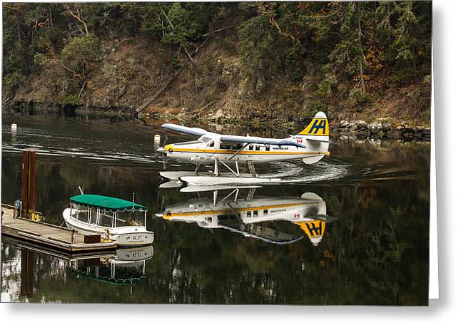 Victoria Johns Greeting Cards - Harbour Air in the Cove Greeting Card by John Daly