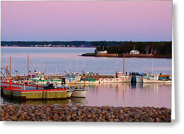 Harbour Sunset Greeting Card by Ron Haist