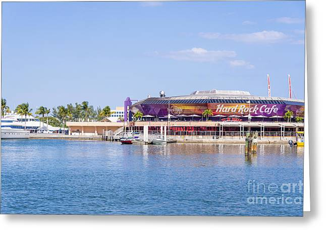 Hard Rock Cafe Building Greeting Cards - Hard Rock Cafe Port of Miami Greeting Card by Andre Babiak