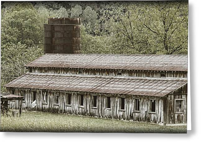 Tennessee Farm Greeting Cards - Harding Road Barn Greeting Card by Pic
