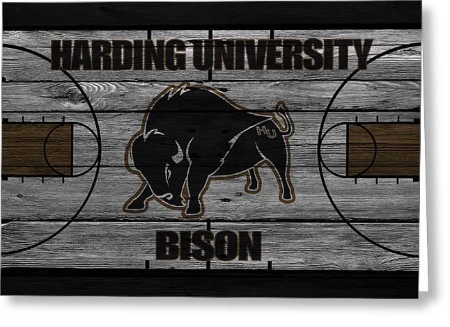 Buffalo Greeting Cards - Harding University Bison Greeting Card by Joe Hamilton