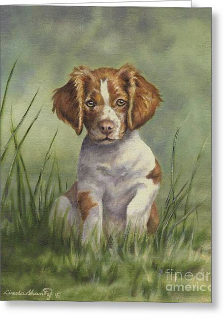 Spaniel Greeting Cards - Hardwired Greeting Card by Linda Shantz