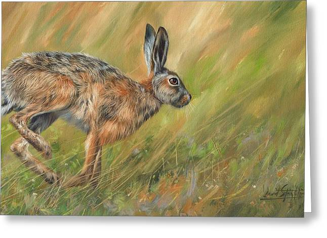 David Greeting Cards - Hare Greeting Card by David Stribbling